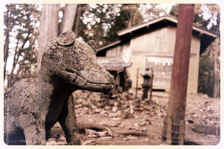 両神神社の狛犬(ニホンオオカミ)