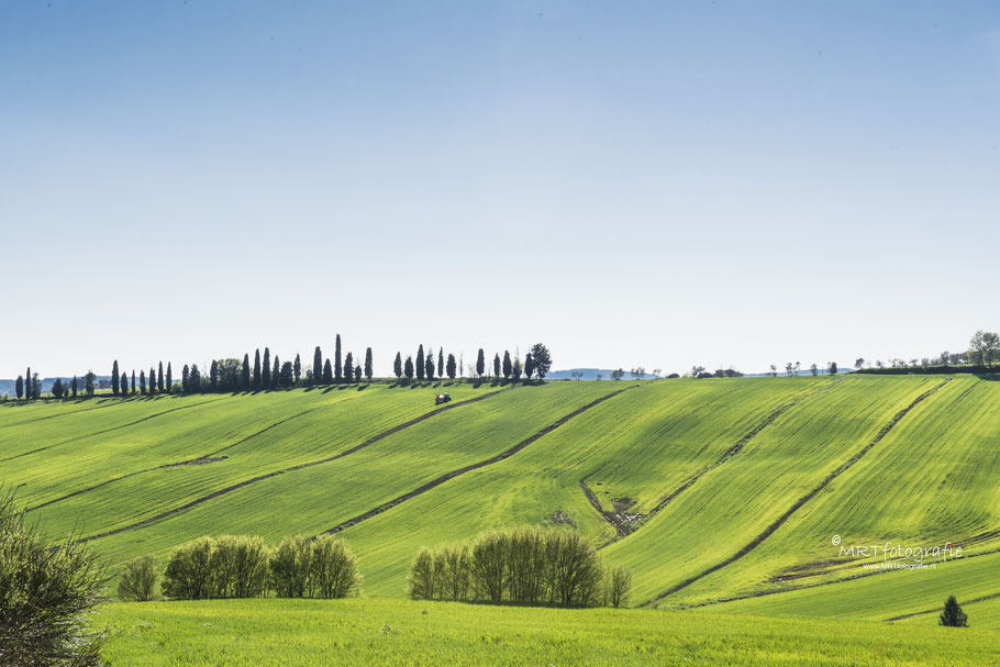 Agricultuur in Toscane