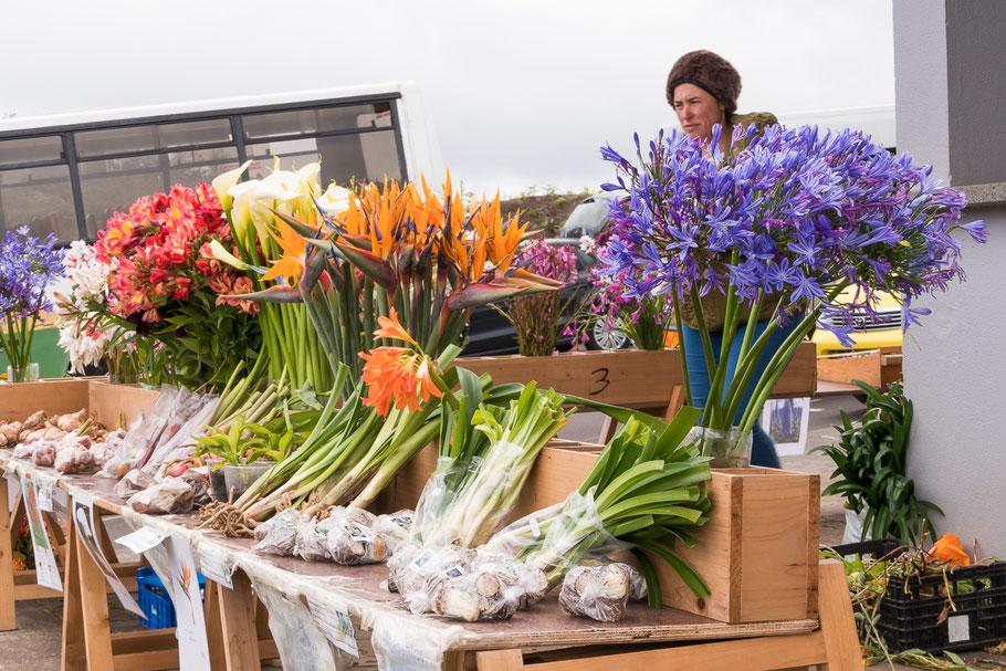 Bloemenverkoopster Madeira