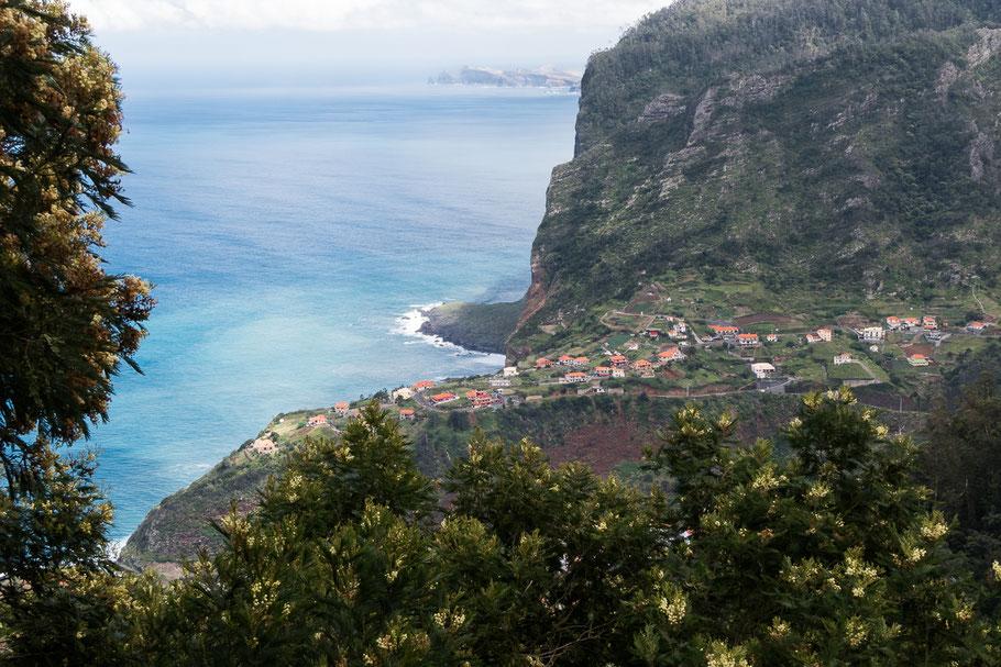 Op weg naar Santana door het park van Queimadas op zo'n 900 mtr. boven zeeniveau. Madeira