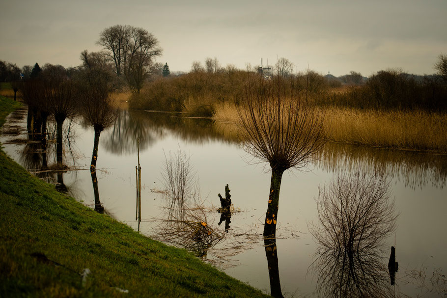 Ondergelopen uiterwaarden langs de IJssel