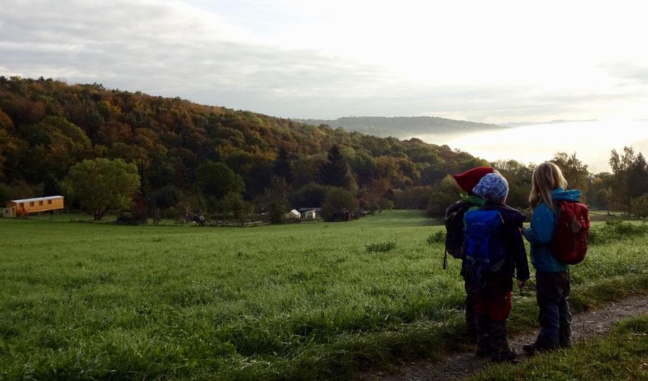 Unser Gelände - umgeben von Wiesen, Feldern und Wald - auf dem Tübinger Herrlesberg.