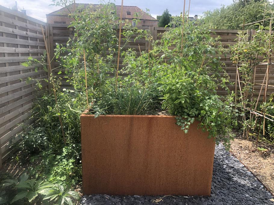 Organiser son potager - Marguerite Ferry - Urban Garden Designer - Brussels
