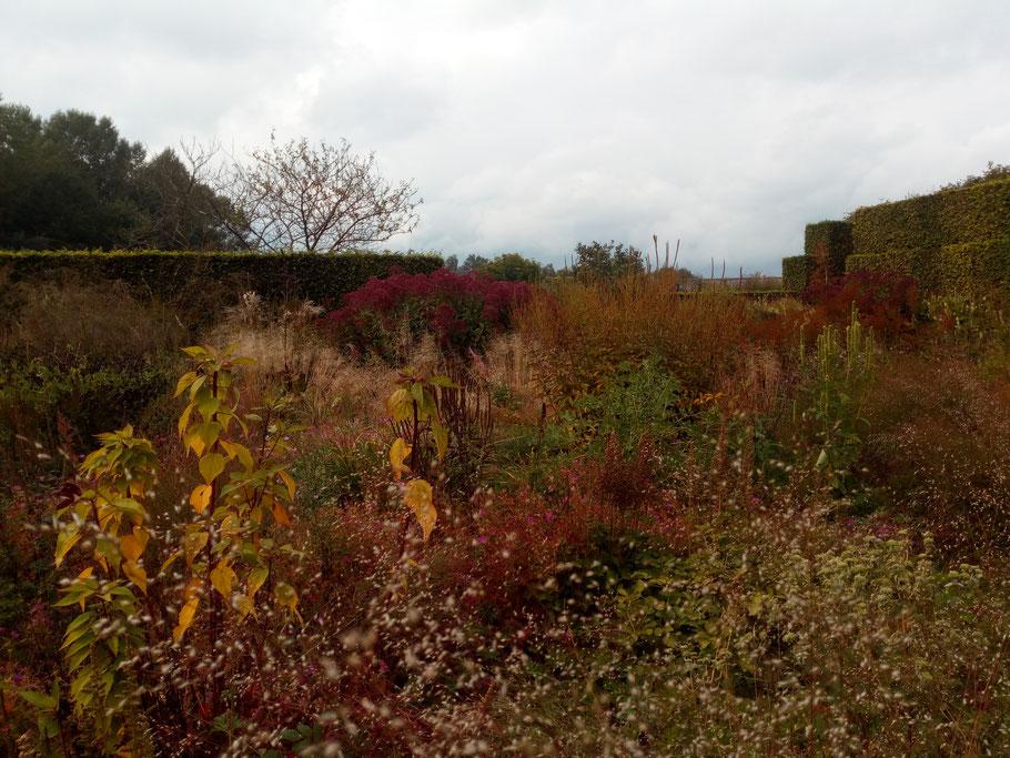 L'automne - Saison Bilan Jardin - Jardin privé du paysagiste Piet Oudolf - Hummelo - Blog Jardin Belgique