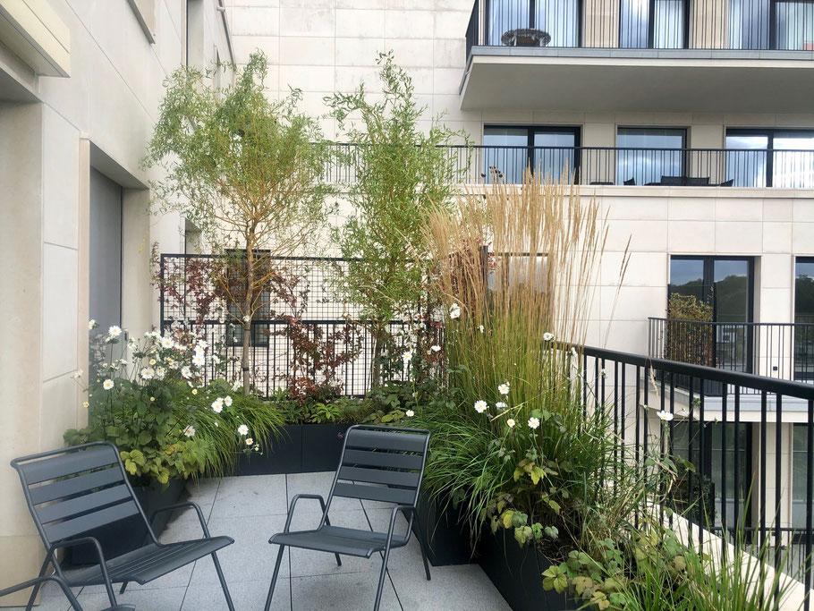 Aménagement d'un balcon avec viv-à-vis - Marguerite Ferry - Urban Garden Designer - Brussels - Ladscapedesign