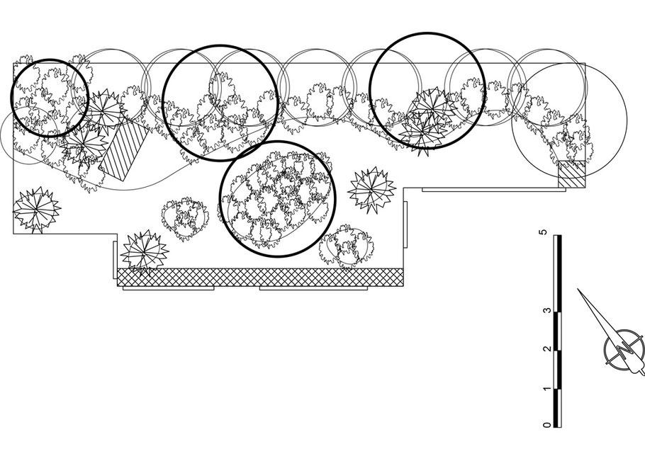 Dessiner son jardin - Marguerite Ferry - Urban Garden designer - Bruxelles - Blog Jardin Belgique
