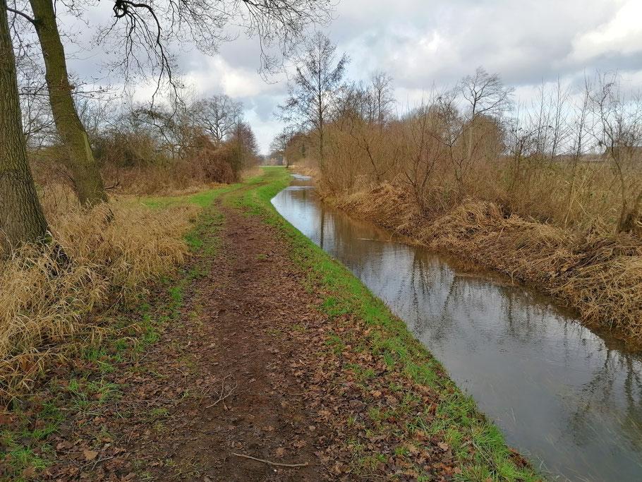 De Beneden Slinge voert ook al flink wat water (22-1-2021).