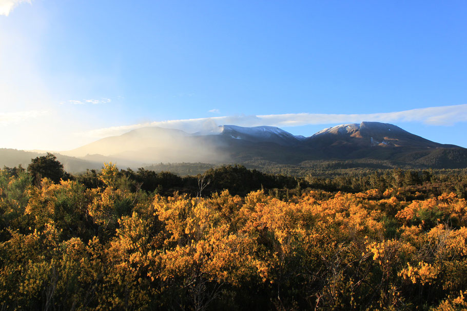 Tongariro National Park, Neuseeland (c) Salomé Weber