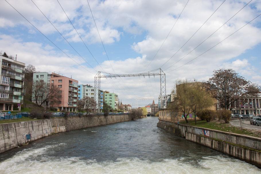 Der Someșul Mic entsteht bei Gilău und fließt durch Cluj Napoca. (c) Salomé Weber
