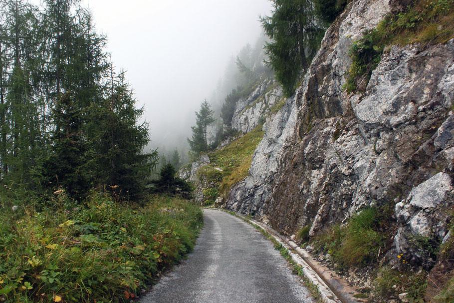 Weg durch den Nationalpark Berchtesgaden (c) Salomé Weber