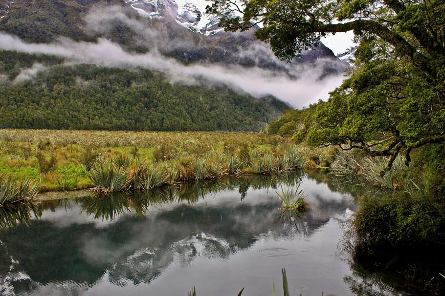 Mirror Lakes, Neuseeland (c) Salomé Weber