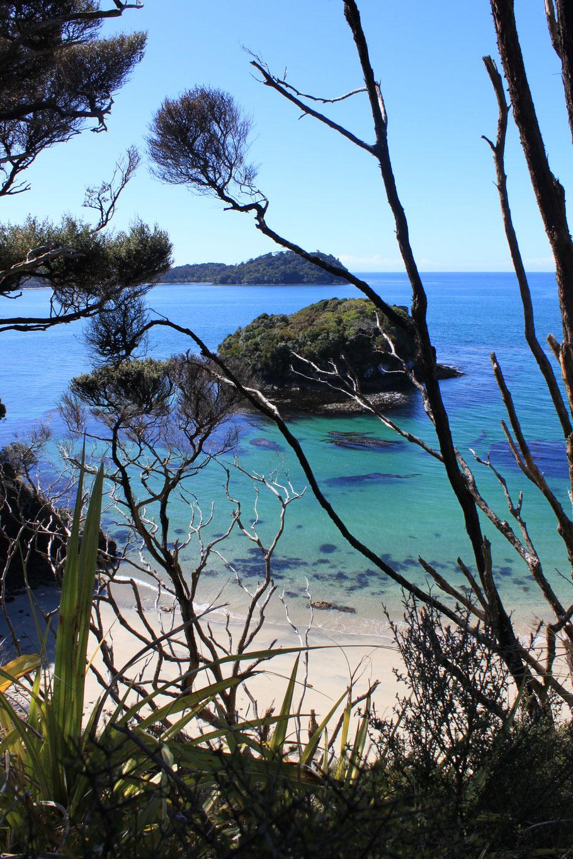 Stewart Island, Neuseeland (c) Salomé Weber
