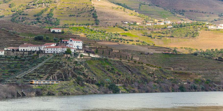 Weingut in der Weinbauregion Alto Duoro