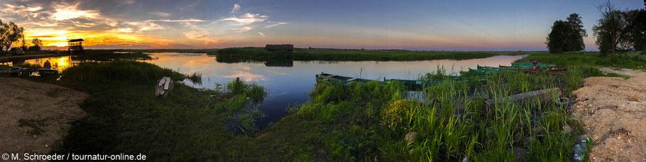 Abendstimmung im Narew Nationalpark - unser Übernachtungsplatz ist ganz links neben der Sonne!