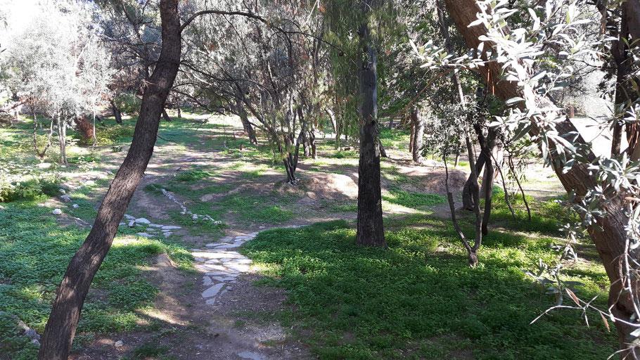 Philosophieren im Gespräch, Wanderung, Peripatetiker, Akademie Platons in Athen