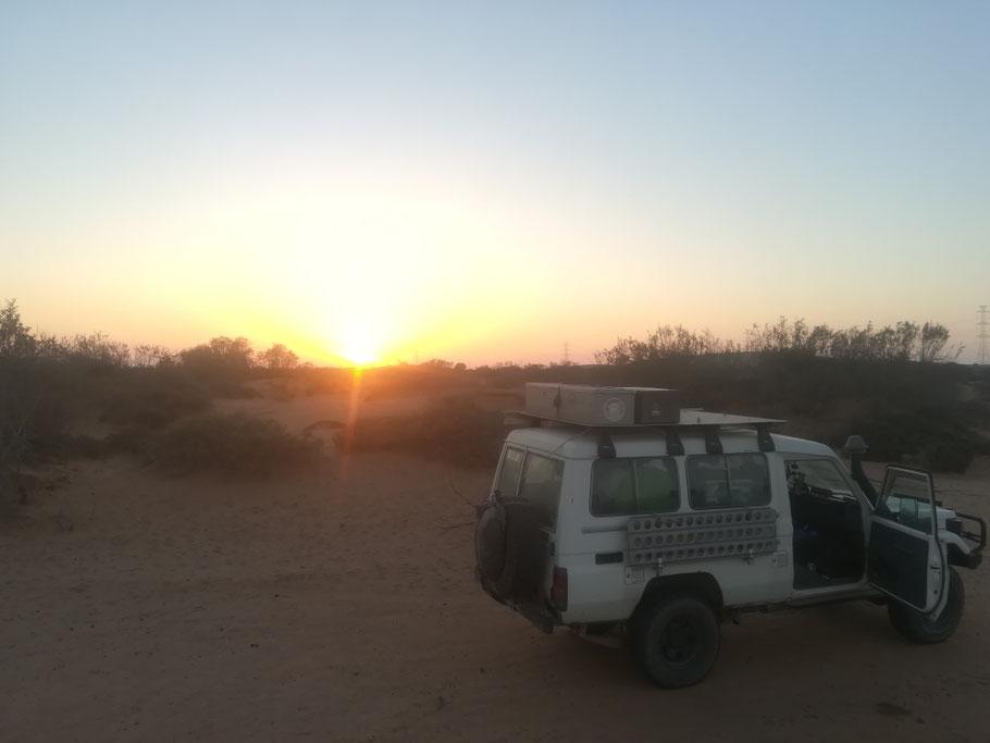 Unser Schlafplatz bei Guelmin. Nur wenige Kilometer vom Marjane entfernt bei N28° 56.540 W010° 00.930 in einem Wadi