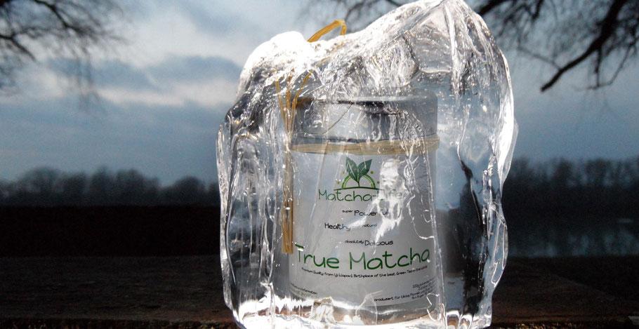 Bild: Matcha-Tee Teepflanze gefroren lagern aufbewahren
