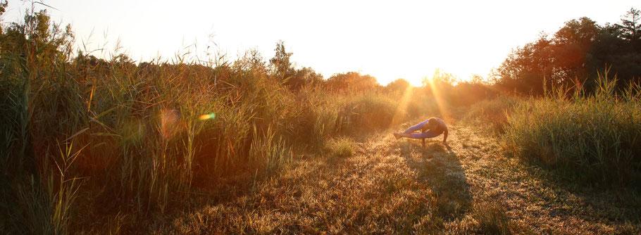 Yoga - Allheilmittel, Lebensphilosophie und ganzheitliches Körpertraining im Murnauer Moos