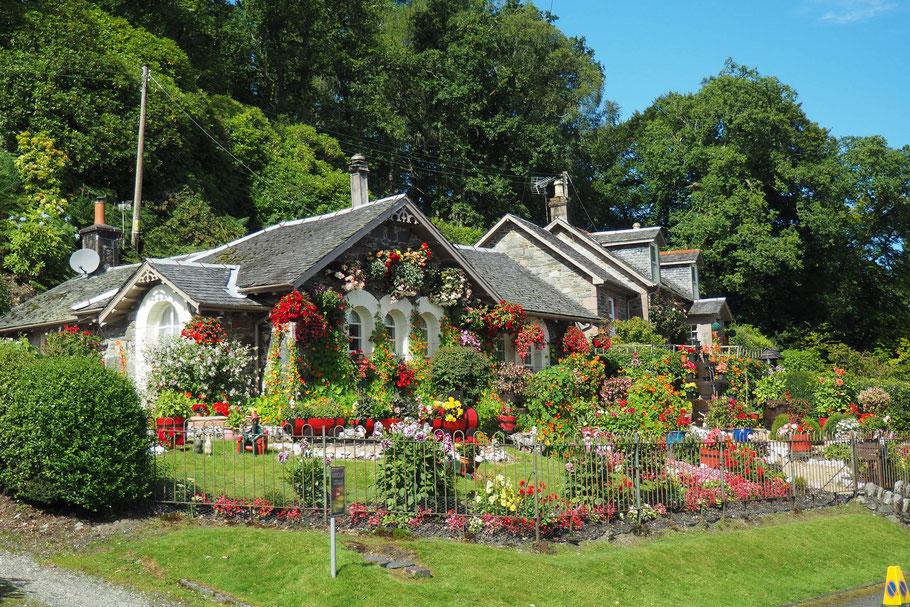 Gartenhaus, Gartenlaube, Schaukel, Konstruktionen aus Holz und Plastik reparieren oder sanieren