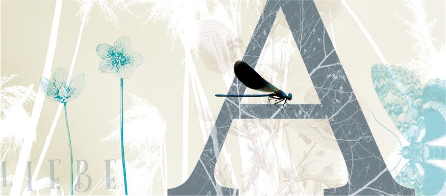 Artprint mit Illustration und Fotografie – Liebe mit Buchstabe A und Libelle
