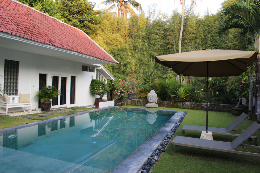A large swimming pool, backside garden and natural look of tall trees on the back of the villa