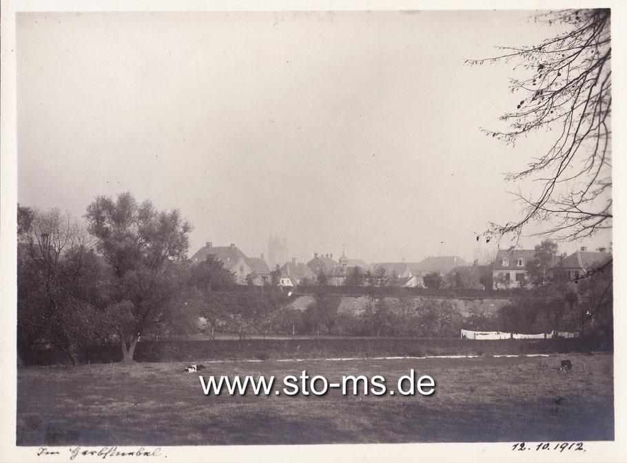 Die Westerholtsche Wiese mit Blick auf die Innenstadt