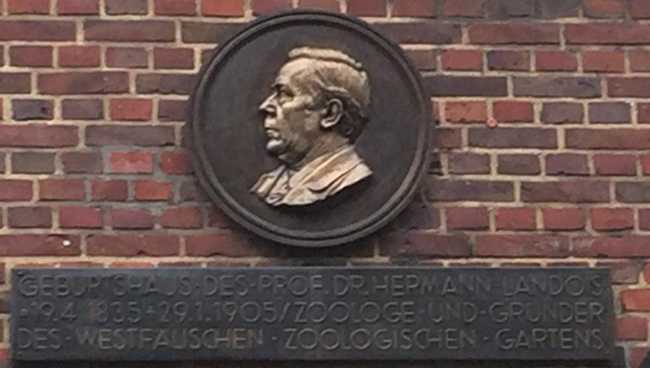 Geburtshaus Rothenburg 33 - Relief und die  Erinnerungstafel am wiederaufgebauten Haus