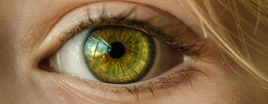 Irisdiagnose - was das Auge über die Gesundheit aussagt.