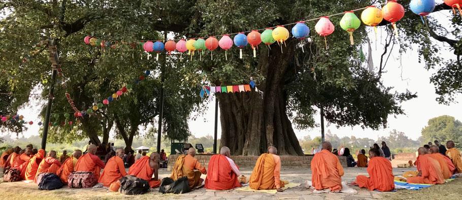 buddhisme nepal
