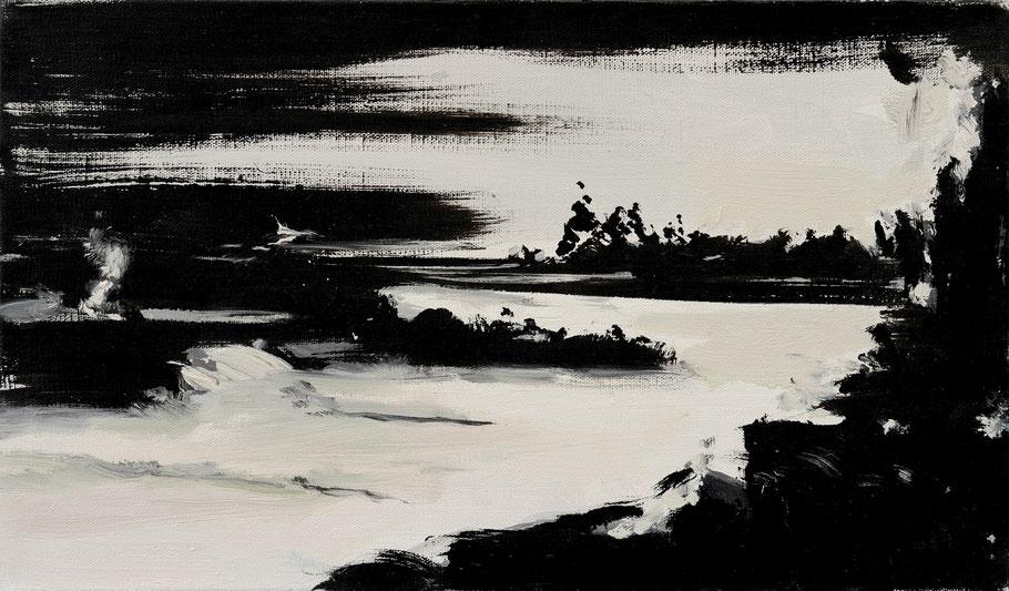 Matthieu van Riel Schilderijen. Zonder titels 30x40cm (l) en 30x50cm olie op canvas 2013