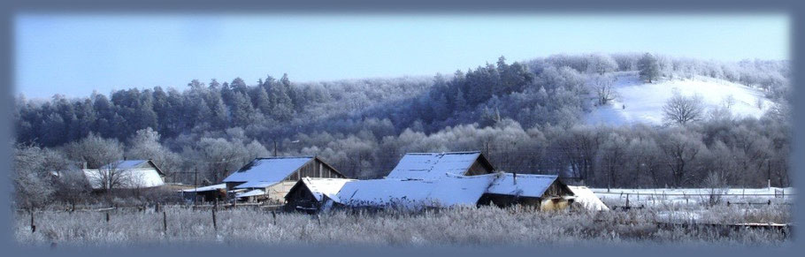 Вид с ул. Рабочей на гору Шиханка. Декабрь 2011 г.