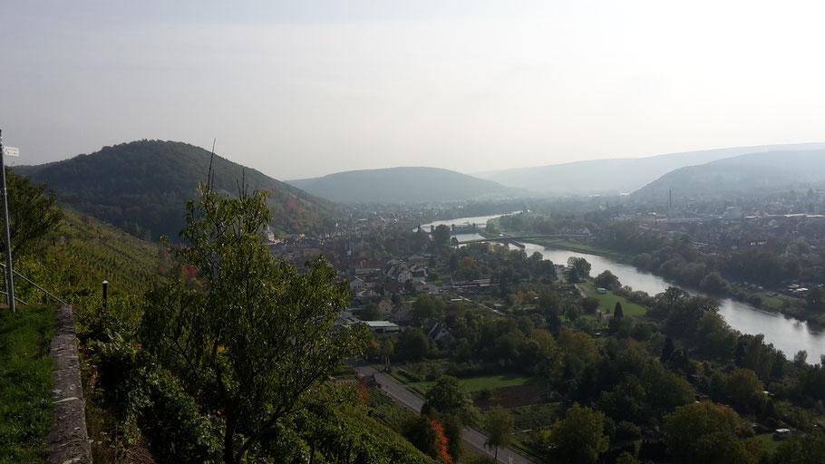 auf dem Rotweinweg bei Klingenberg am Main