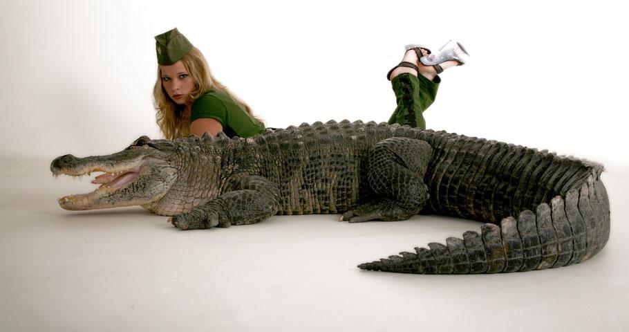 Fotoshooting mit exotischen Tieren