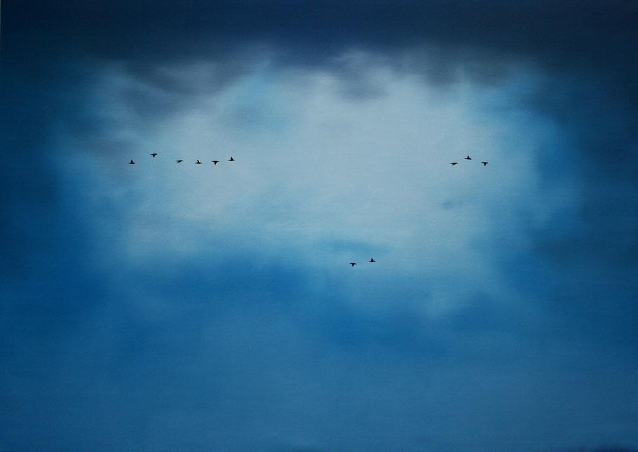 Vogelschwarm 11, 170 x 240 cm, Öl auf Leinwand, 2011