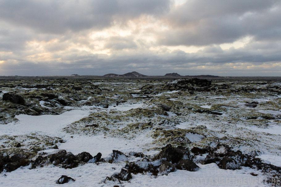 Island,Lavafeld,süden,Keflavik,Reykjavik,winter,schnee,februar