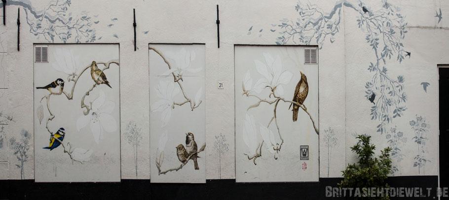 Haarlem,Hausfassade,Vögel,bemalt,Graffiti,Niederlande,Holland