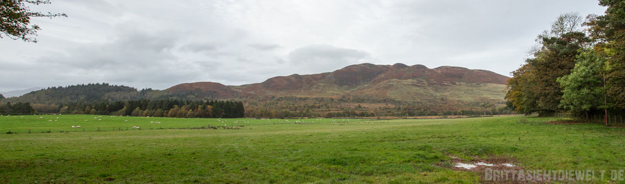 Loch,Lomond,Conic,Hill,schottland,tipp,Panorama