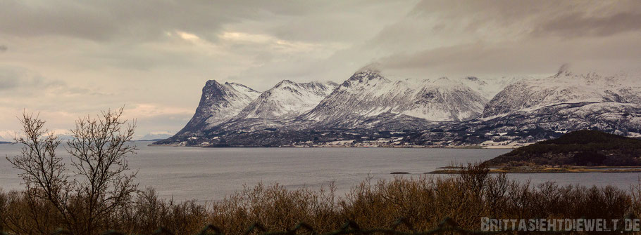 Adolfkanone,Harstad,Vesterålen,Hurtigruten,Panorama,Norwegen,ms,Midnatsol, Postschiff,Winter,November,Tipps