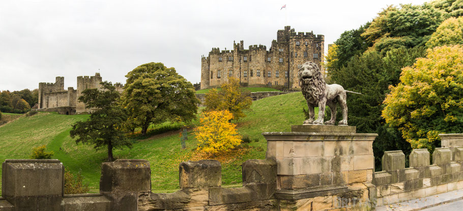 Alnwick,castle,Schottland,Tipps,Hary,potter,down,town,abbey,panorama