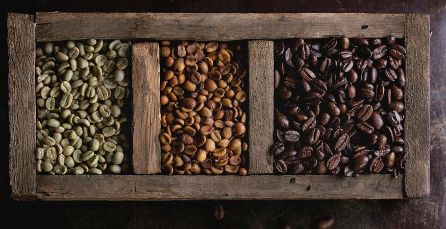 Rohen Kaffee selber rösten Roast Rebels