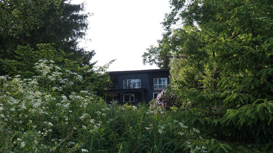 Haus am See im Harz