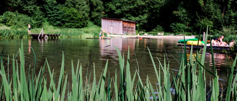 Badeweiher Schnitzmühle bayerischer Wald