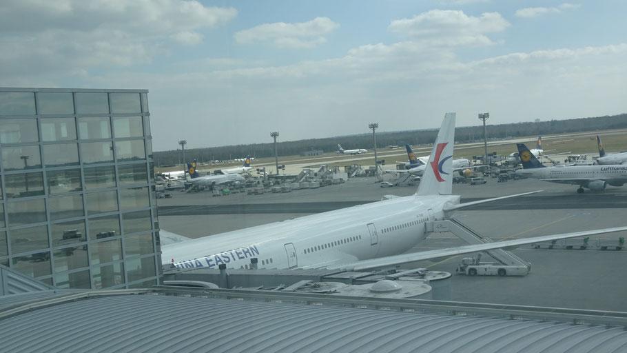 Airplane from Frankfurt to Shanghai
