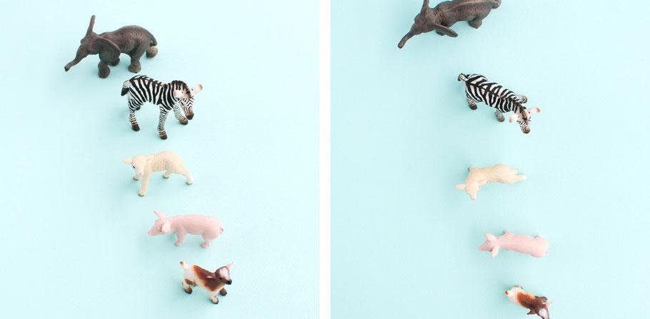 Cómo conseguir fotos más creativas by Sami Garra