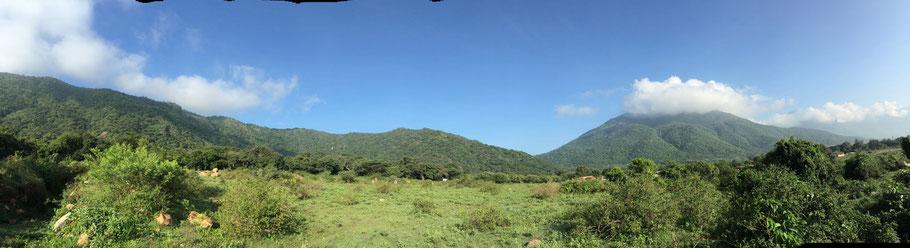 Aussicht von der AVP Ayurveda Klinik in Mangarei