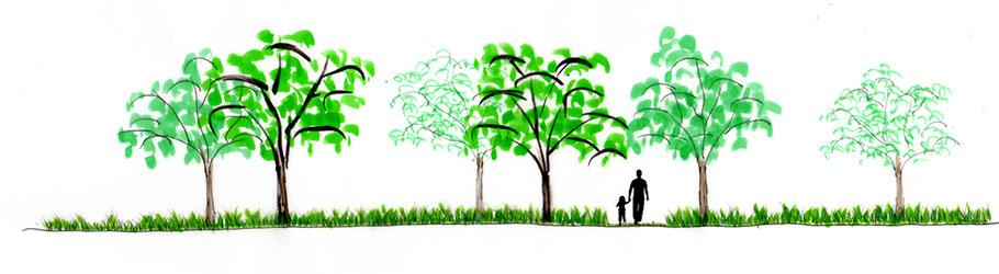 Avant-projet - Ambiance végétale du verger des oiseaux