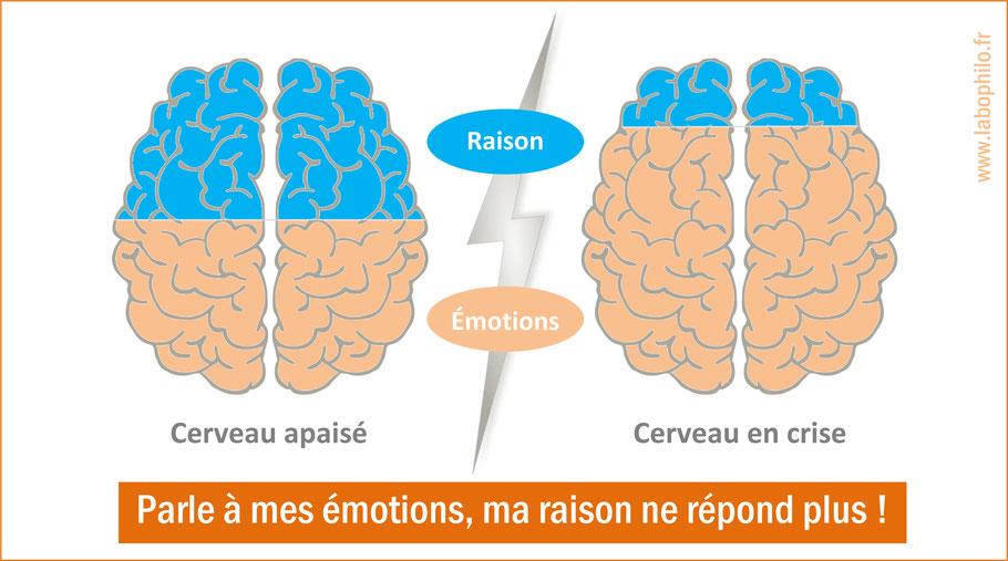 Crise émotionnelle. émotions.