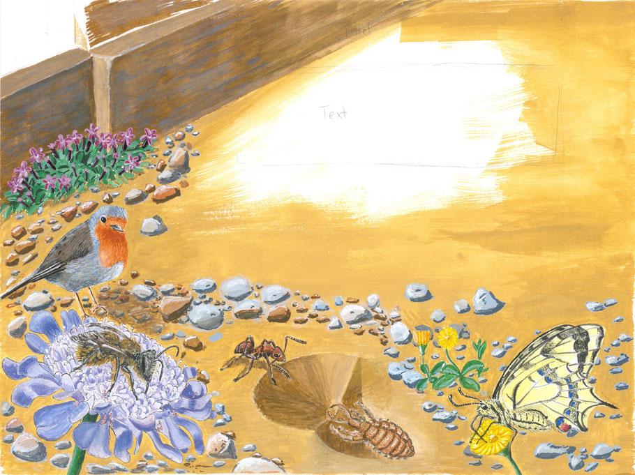 Fertige Illustration: Zum Einsatz kamen Bleistift, Wasserfarben und Gouache.