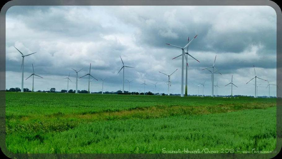 ...typische Landschaft im Westen Schleswig Holsteins.