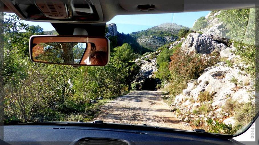 Ziel: Costera de Moll (Grillecke mit Parkplatz in den Bergen)